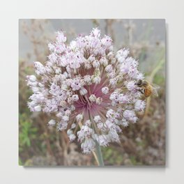 Thank you for BEEing Love Metal Print