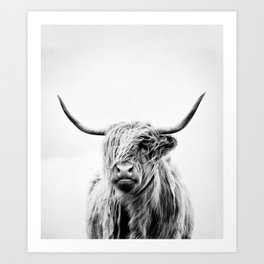 portrait of a highland cow - (vertical) Art Print