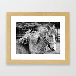 Good friends Framed Art Print