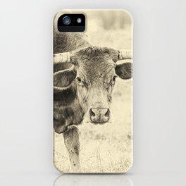 The Texas Longhorn iPhone Case