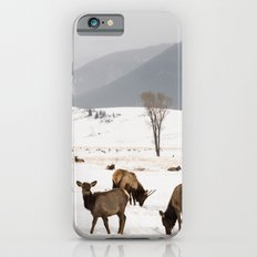 Herd of Elk in Wyoming on a Snowy Winter Day iPhone 6s Slim Case