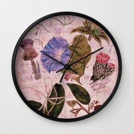 Botanical Study #4, Vintage Botanical Illustration Collage Art Wall Clock