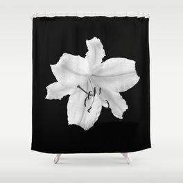 Lily -  black and white fine art photography Shower Curtain