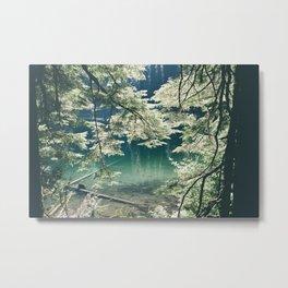 Green Lake Metal Print