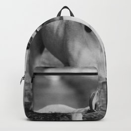 Fetch (Black and White) Backpack