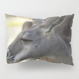 Male Kangaroo Pillow Sham