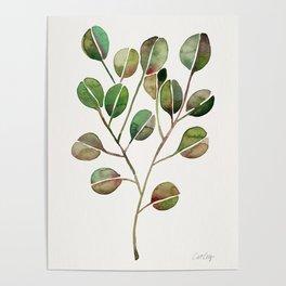 Silver Dollar Eucalyptus – Green Palette Poster