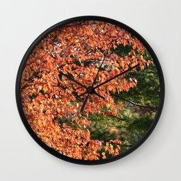 Nature's Ying Yang Wall Clock