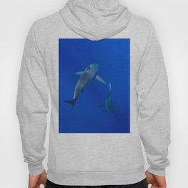 Hawaiian Shark III Hoody