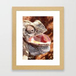 The Laughing Chameleon Framed Art Print