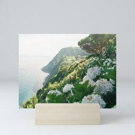 Nordeste Mini Art Print