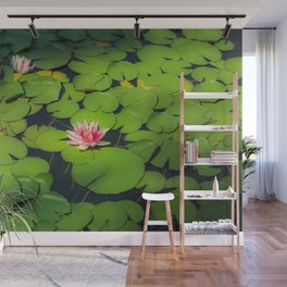 Beautiful Water-Lily Blooming Wall Mural