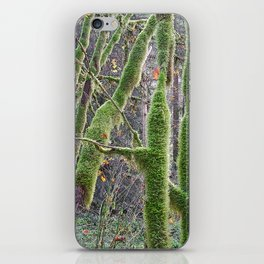 YOUNG RAINFOREST VINE MAPLES iPhone Skin