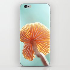Tiny Tropical Cricket Canopy iPhone & iPod Skin