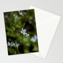 Sweet memories. Stationery Cards