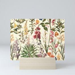 Secret Garden VI Mini Art Print