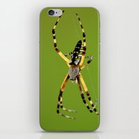 writer iPhone & iPod Skins featuring Natural Writer by RDelean