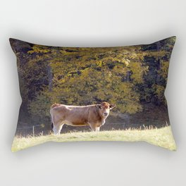 Brown Cow Rectangular Pillow
