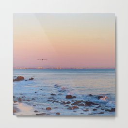 Gliding in Twilight Metal Print