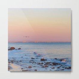 Gliding in Twilight Metal Print