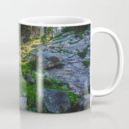 Near Fairy Lake, Gallatin County, MT Coffee Mug