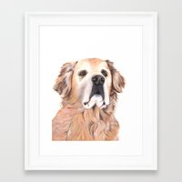 golden retriever Framed Art Prints featuring Golden Retriever by LouiseDemasi