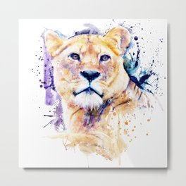 New Lioness Portrait Metal Print