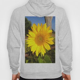 Country Sunflower Hoody
