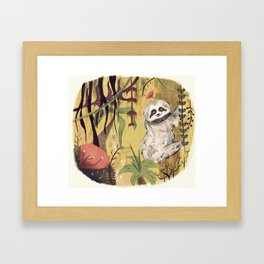 Sloth Bear Framed Art Print