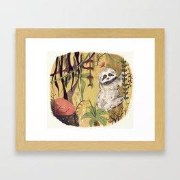 Sloth Bear Framed Art Print