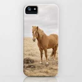 Solitary Horse in Color iPhone Case