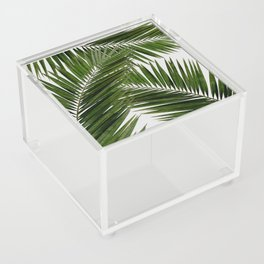 Palm Leaf III Acrylic Box