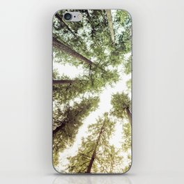 Green Forest Sky Trees iPhone Skin
