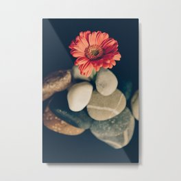 Flower and stones Metal Print
