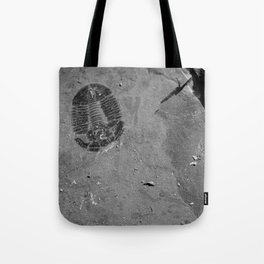 Utah - Trilobite Fossil Shards Tote Bag