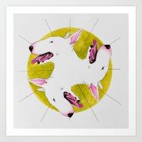 bull terrier Art Prints featuring Bull Terrier by Erin Shea
