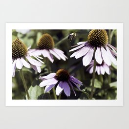 Bee-utiful Art Print