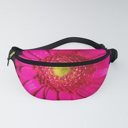 Large Pink Gerber Daisy Fanny Pack