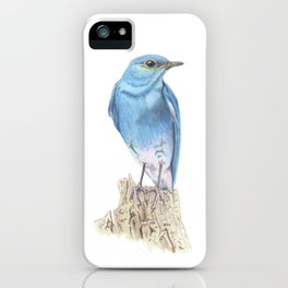 Mountain Bluebird iPhone Case