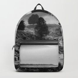 A peaceful world Backpack