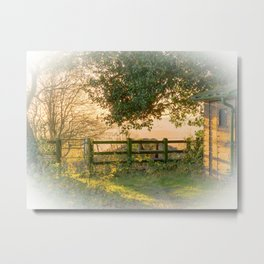 Winter Sun On The Shed Metal Print