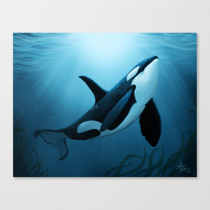 """""""The Dreamer"""" by Amber Marine ~ Orca / Killer Whale Art, (Copyright 2015) Canvas Print"""