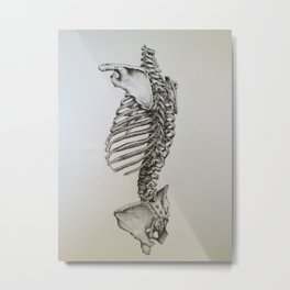 Human Vertebrae Pencil Drawing Metal Print