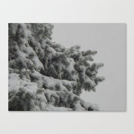 Early White Winter Canvas Print