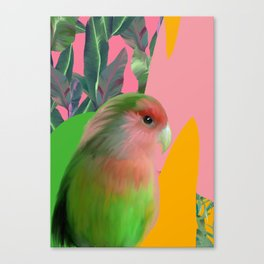Love Bird with Palms Canvas Print