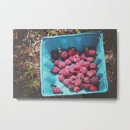 Bundle of Berries Metal Print