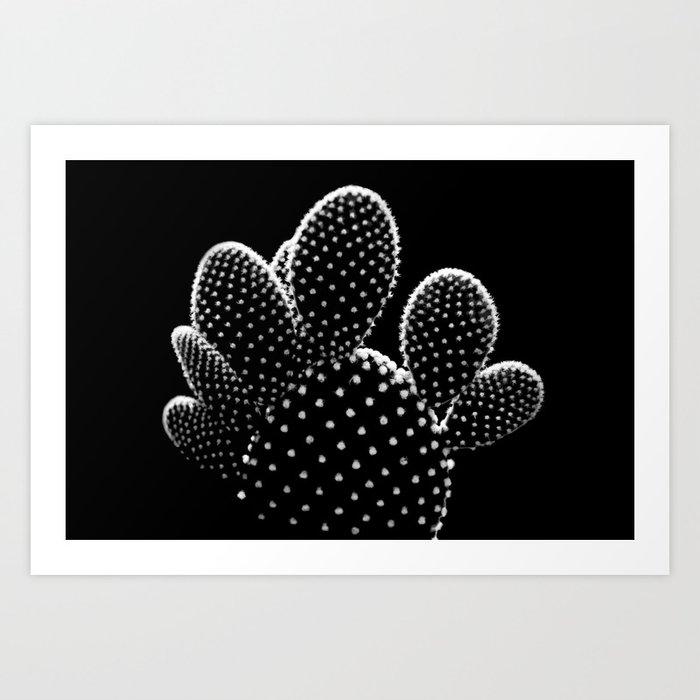Cactus Minimalism Photography | Black and White | Desert Things Kunstdrucke