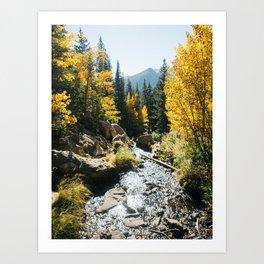 Colorado in the fall Art Print