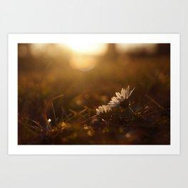 Enjoy the sun Art Print