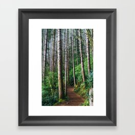 Trees: III // Oregon Framed Art Print